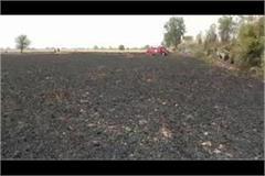 fierce fire in wheat fields about 30 acres of crop burnt