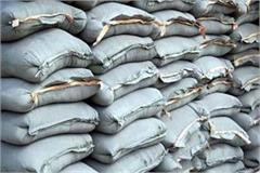 cement price increased before election in himachal