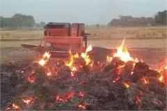 malwa farmers are frankly fired in fields low trends in doaba