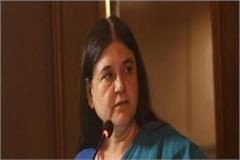 my statement presented incorrectly maneka gandhi