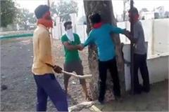 hooliganism in the name of cow protection in seoni