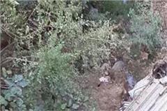 car in fell deep ditch