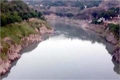 young jumb in satluj river