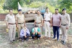 2 arrested with jeep of loaded with wood