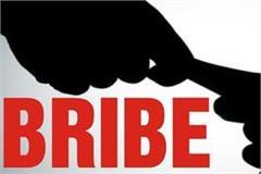 police arrest assistant transport officer in bribe case