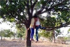 failure of love couples hanged in love hanged from tree