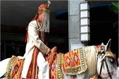 bridegroom fell down from the mare