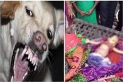 28 days old innocent dogs eaten