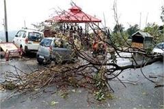 storm and rain fray devastation in nahan