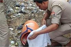 6 year old dead body found in dustbin