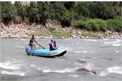 tourist in beas river