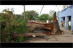 uttar pradesh 19 people were killed and 48 injured in a storm