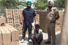 drug smuggler arrest