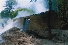 rewalsar gaushala ash animal death