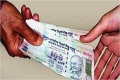 chandigarh hindi news