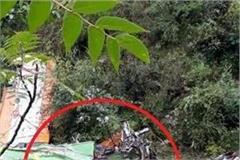 rto mvi accountability in banjar bus accident