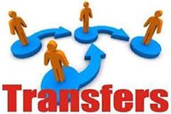 transfer of nayab tehsildars