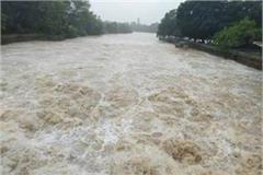 started growing rain was up s water level in rivers