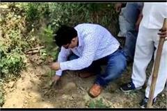 nature lover is the sdm of amroha