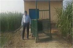leopard panic in baroda village