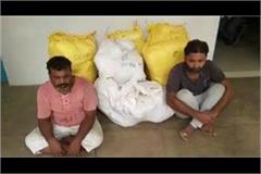 2 arrested with marijuana 60 lakh price in meerut