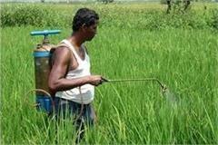 cooperative department s efforts to increase farm income