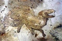 skeleton of weird animal