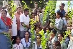 under the plantation program 30 lakh plants will be planted in the state