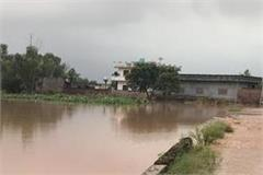 flood in punjab see the pictures of the village bolewal after the rain