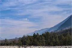 5 rivers of himachal will be made pollution free on the lines of namami gange