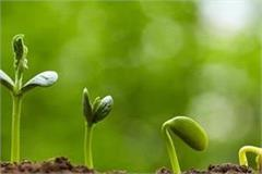 22 crore plants to be planted in up on the occasion of august