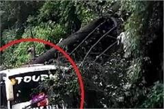 a tree fell on the bus of nepali tourists