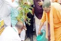 chief minister yogi launches tree plantation mahakumbh in uttar pradesh