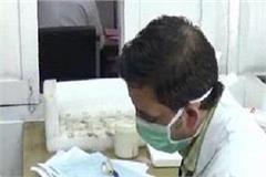 scrub typhus in himachal