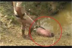 dead body of unknown person found in roadside field fear of murder