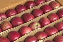 telescopic cartons will not run in apple season