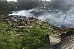 nadaun stockyard fire goats death