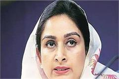 minorities in pak issue before un human rights commission jaishankar