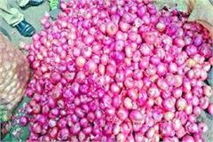 onion getting away from common man s reach rate reached rs 70 per kg