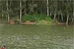 ndrf team conducted search operation in pong dam on second day too