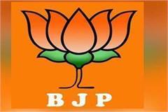 swarghat bjp organizational election incharge