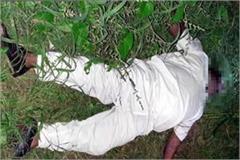 deadbody in field