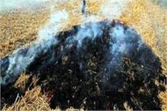 reduction in stubble burning cases in haryana purchase of biomass plants
