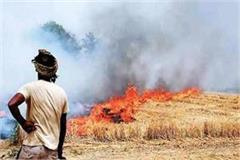 cases stubble burning increased this year