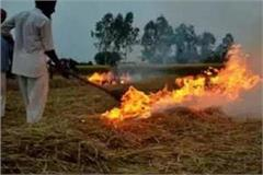 action will be taken on farmers who burn stubble
