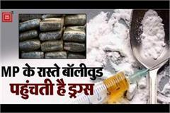 bulk of drugs was being transported to bollywood via mp