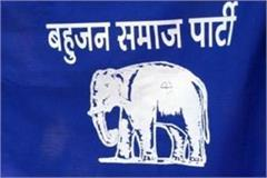bsp s big claim in mp by election will play the role of king maker