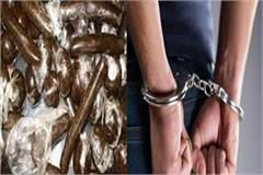 kumarsain police charas person arrested