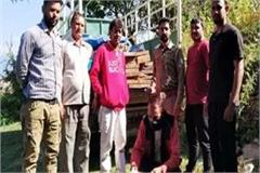 vehicle caught carrying wood illegal