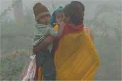 pink chill knocked in up rain in many districts